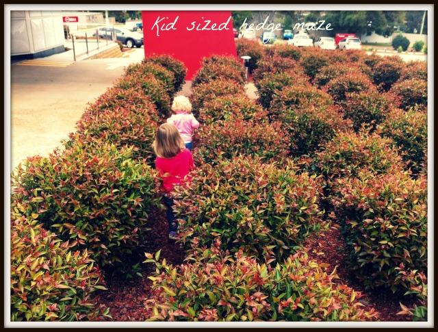 4 hedge maze